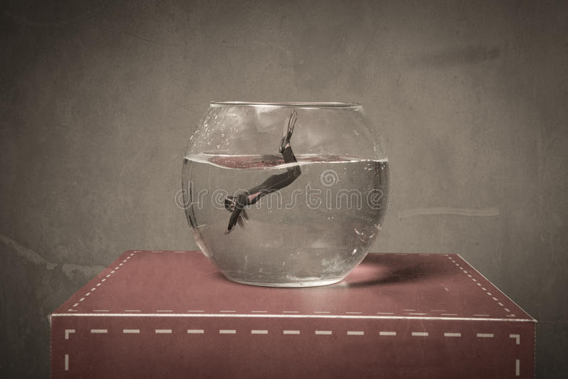 Inmersión en un cuenco de los pescados imagen de archivo libre de regalías