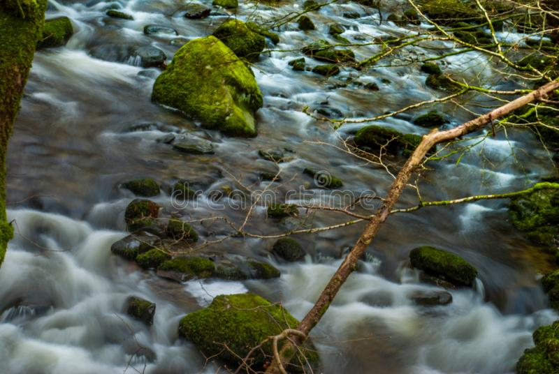 Innaffi il flusso continuo attraverso le rocce in discesa che creano una piccola cascata immagini stock libere da diritti