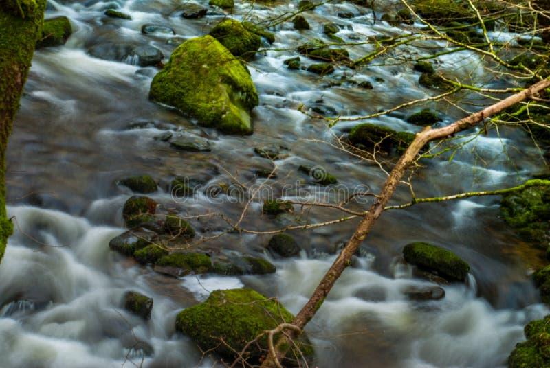 Innaffi il flusso continuo attraverso le rocce in discesa che creano una piccola cascata fotografia stock libera da diritti
