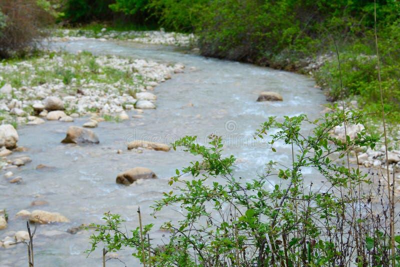 Innaffi la corrente, il fiume della montagna, grandi massi immagini stock libere da diritti
