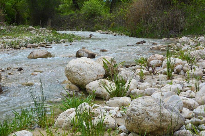 Innaffi la corrente, il fiume della montagna, grandi massi immagine stock libera da diritti