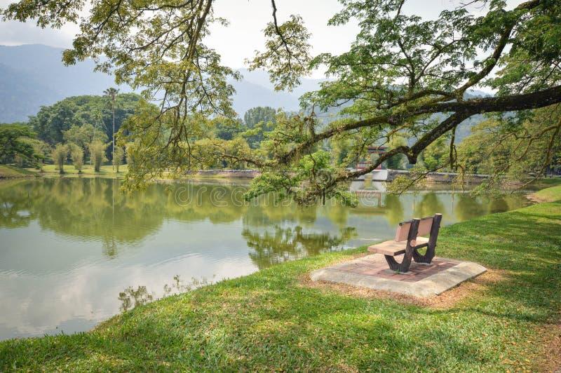 Innaffi le riflessioni in Taman Tasik, aka giardini del lago, nella città di Taiping, stato di Perak, Malesia fotografia stock libera da diritti