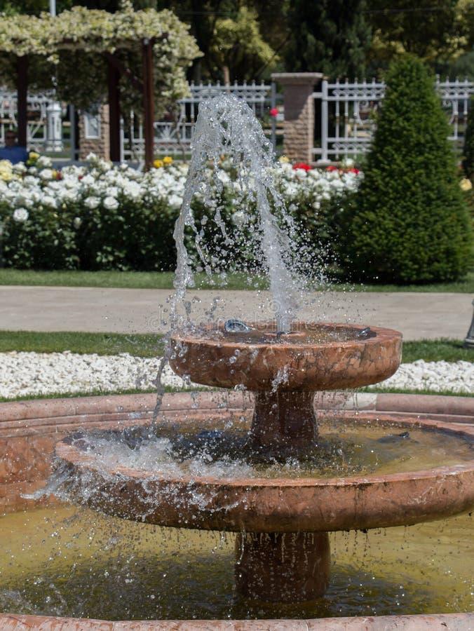 Innaffi lo zampillo fuori dalla fontana nel giardino fotografie stock