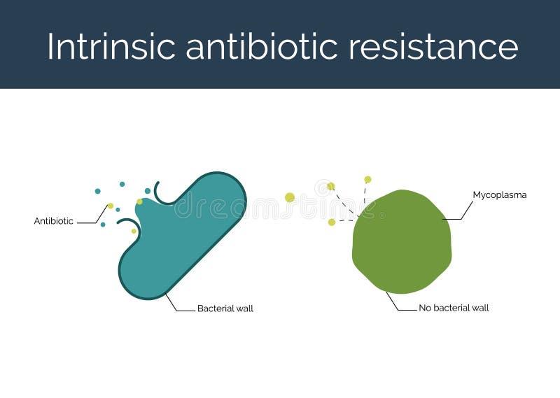 Inneboende antibiotisk motståndsvektorillustration royaltyfri illustrationer