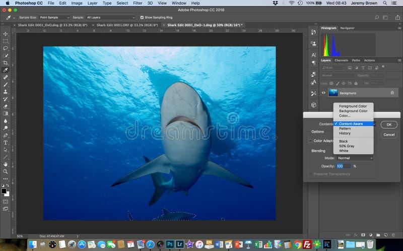 Innehåll-medvetent fyll in Photoshop arkivbilder