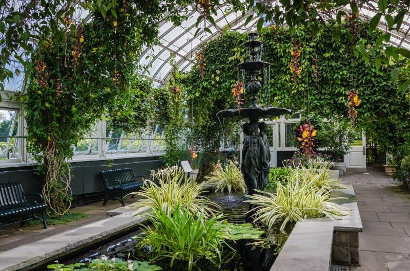 Innen- Haupt-Konservatorium - botanischer Garten New York - NYC stockbilder