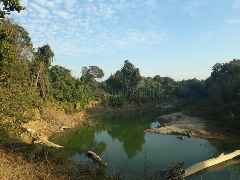 Innenansicht der Natur vom unterschiedlichen Teil der Welt stockfotos