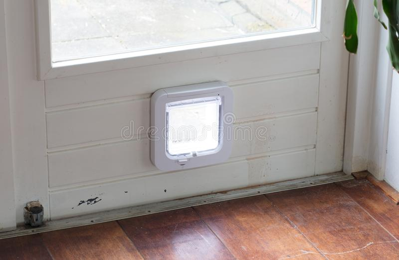 Innenansicht einer regelmäßigen weißen Katzenklappe, flattern geschlossenes lizenzfreies stockbild
