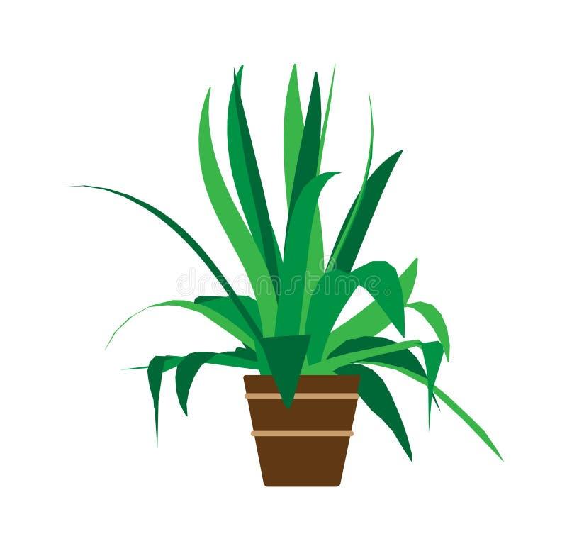 Innenblumentopfausgangsvektor Grüne Karikaturinnenraummit blumenikone Sommerblumenraum-Grafikillustration Bürodekoration klein lizenzfreie abbildung