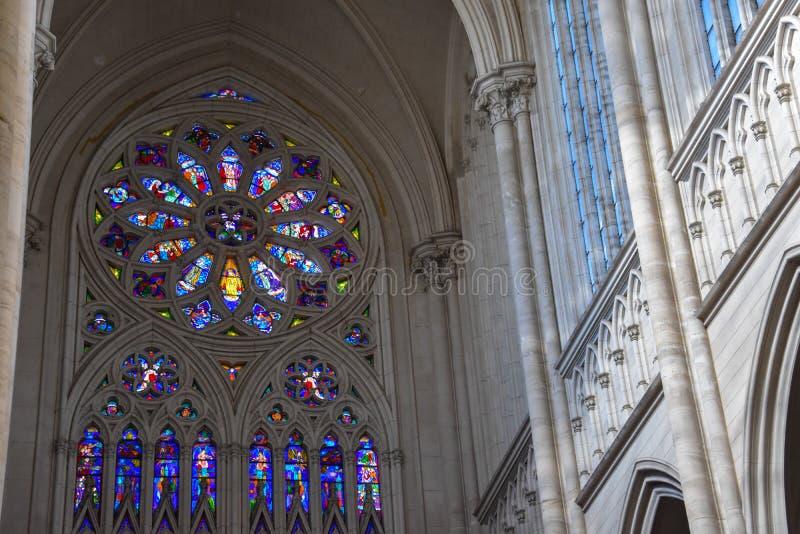 Innenraum der Kathedrale von La Plata stockfotografie