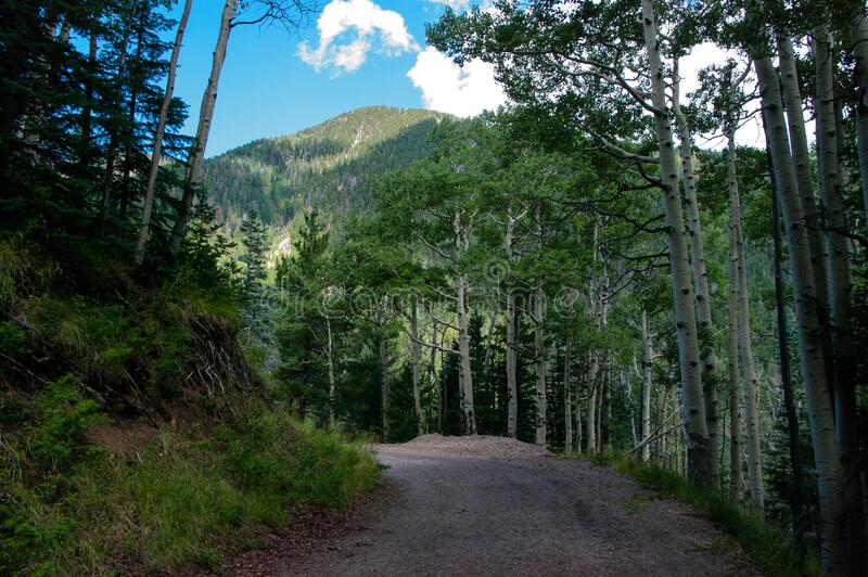 Inner Basin Trail royalty free stock images