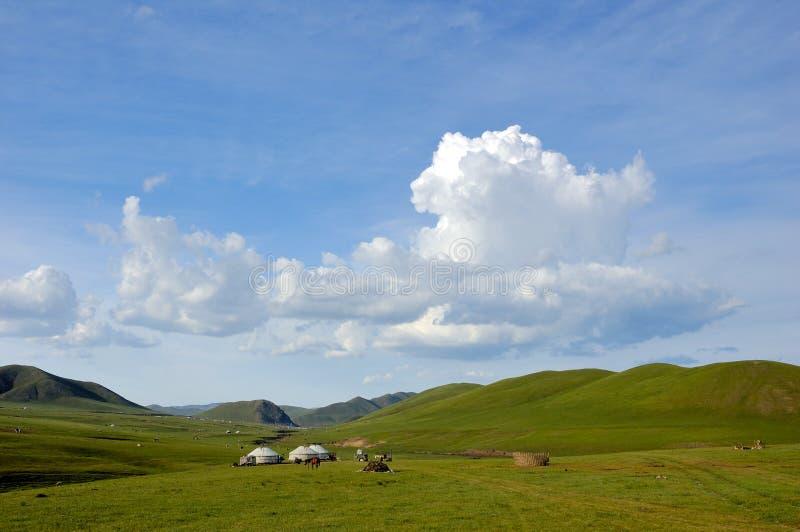 Inner mongolia prairie royalty free stock photo