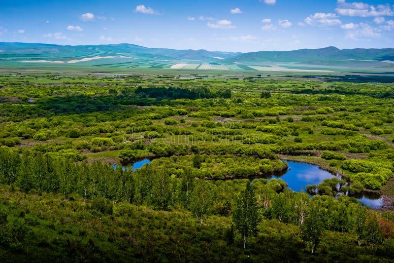 Inner- Mongoliafeuchtgebiet stockbilder