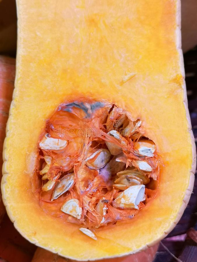 The inner view of an elongated, pumpkin gourd, with its orange meat and many seeds showing. The inner view of a freshly cut, elongated, pumpkin gourd, with its stock photos