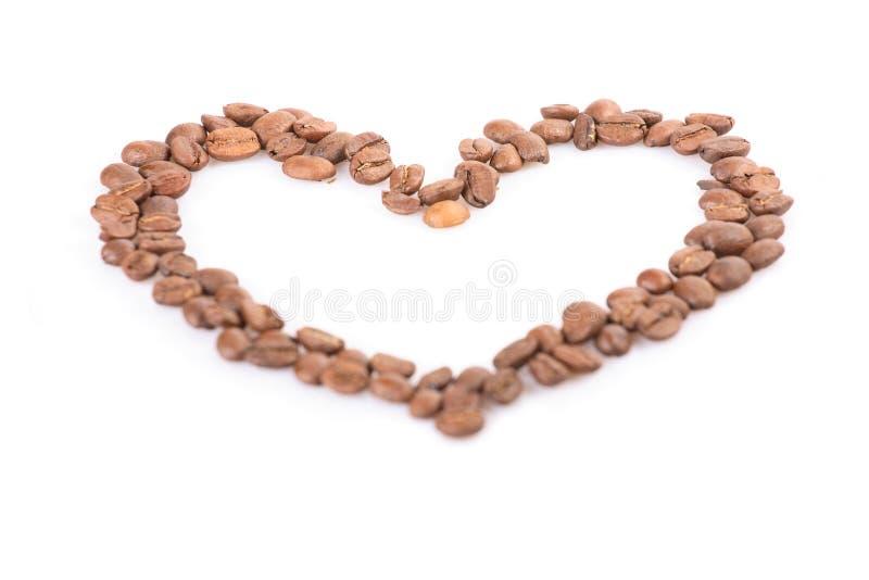 Inneres von den Kaffeebohnen stockfoto