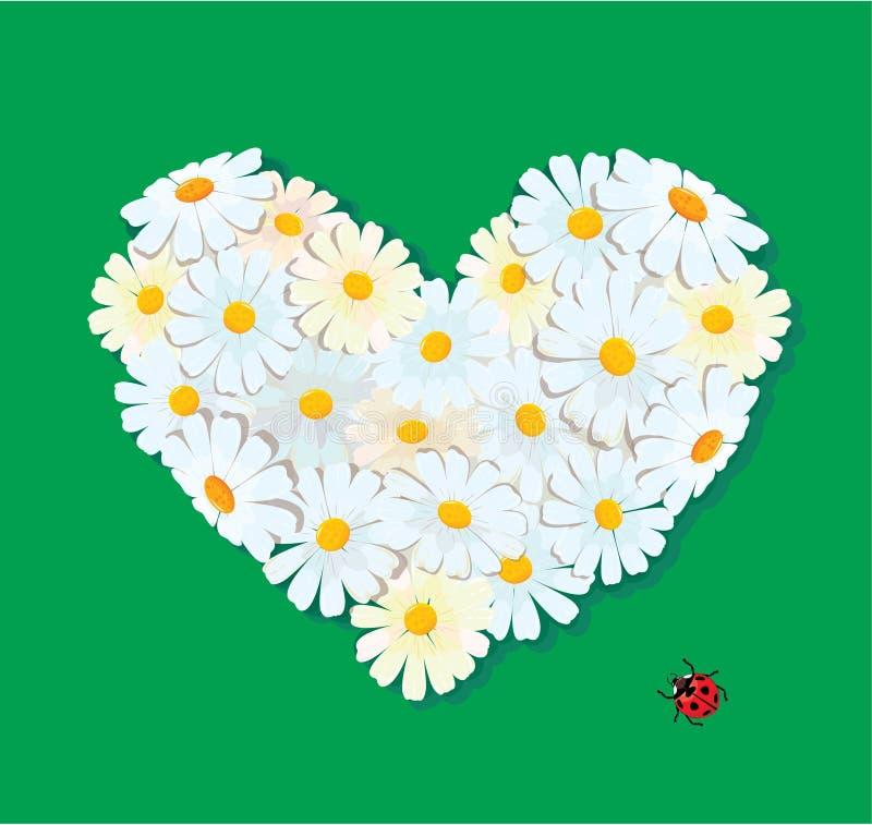Download Inneres Wird Von Den Gänseblümchen Auf Einem Grünen Hintergrund Gebildet. Vektor Abbildung - Illustration von hintergrund, liebe: 27726335