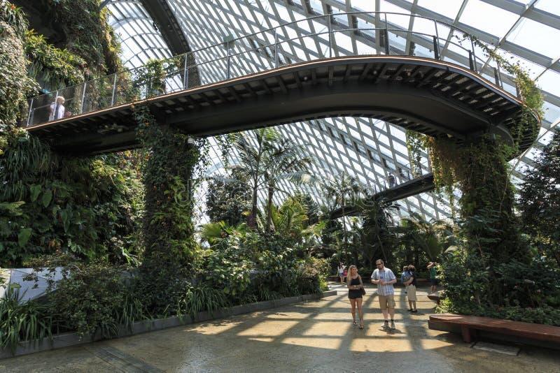 Innerhalb der Wolke Forest Dome Gardens durch die Bucht in Singapur Auf Hintergrund einige Touristen, die vorbei gehen lizenzfreie stockfotografie