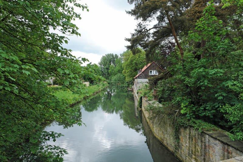 Innerste River stock images