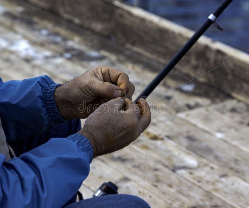 Innesti del pescatore nel gancio un verme coreano immagini stock