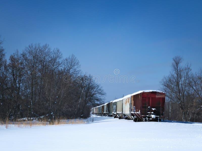 Innevati del trasporto della ferrovia parcheggio sulla pista laterale rurale un giorno di inverno freddo immagine stock libera da diritti