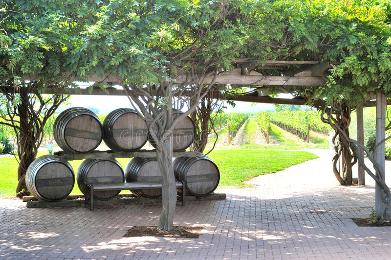 Inniskillin Winery stock image