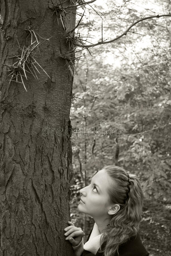 Innocent Girl Looks At Dangerous Needles On A Tree Stock Photography