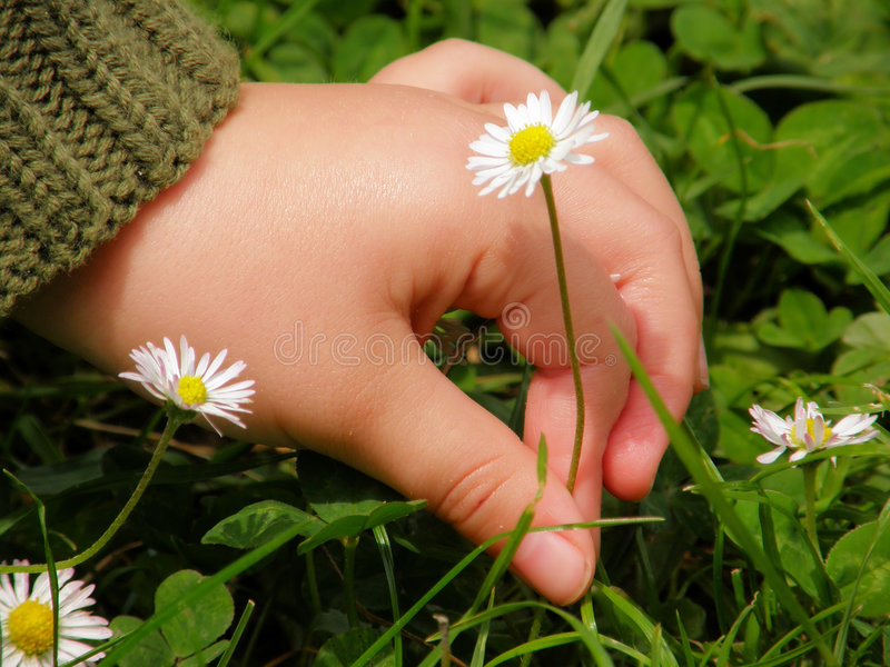 Innocent hand stock images