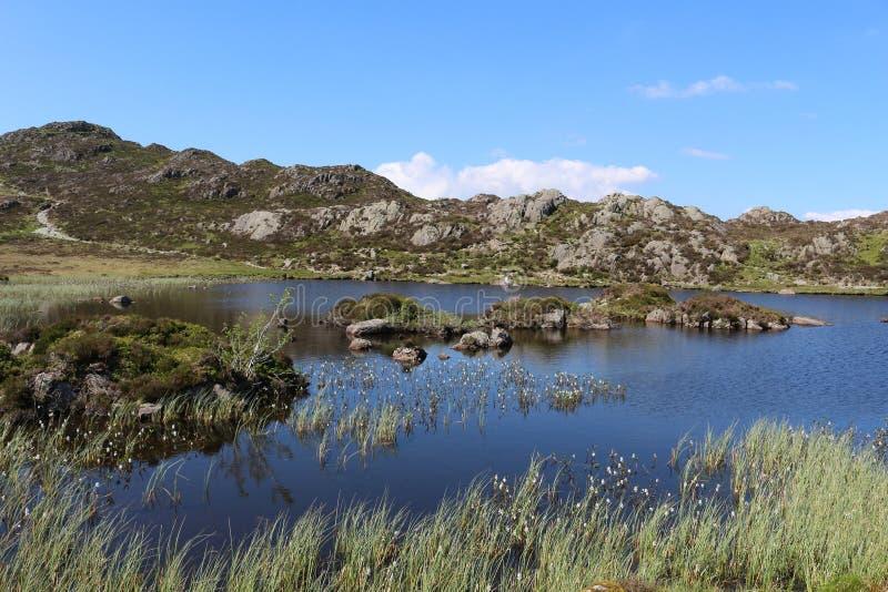 Innominate Tarn, Haystacks, Angielski Jeziorny okręg zdjęcia royalty free