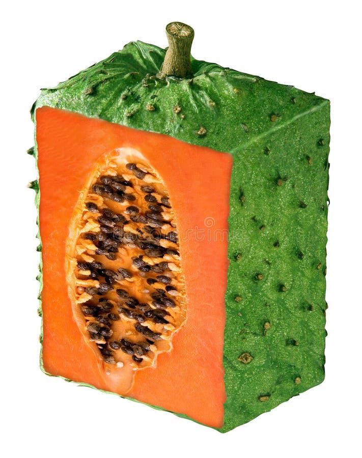 innovation de fruit image libre de droits