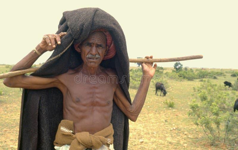 Innozierter indischer Hirte in ariden Gebieten Indiens, Asiens stockfotografie