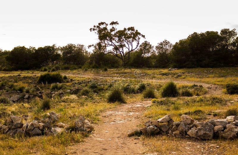 Inny krajobrazowy obraz stock