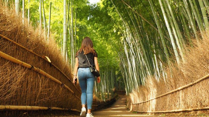 Inom den Arashiyama bambudungen parkera av Japan, en stenlagd bana, med sidor av sugrör, och trä, vägleder denna besökare in i sk royaltyfri fotografi