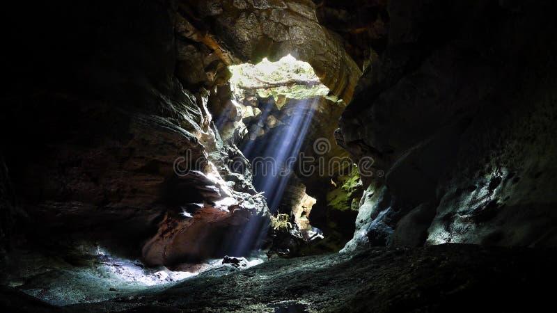 Inom den stängda grottan i den Hallasan nationalparken i Korea fotografering för bildbyråer