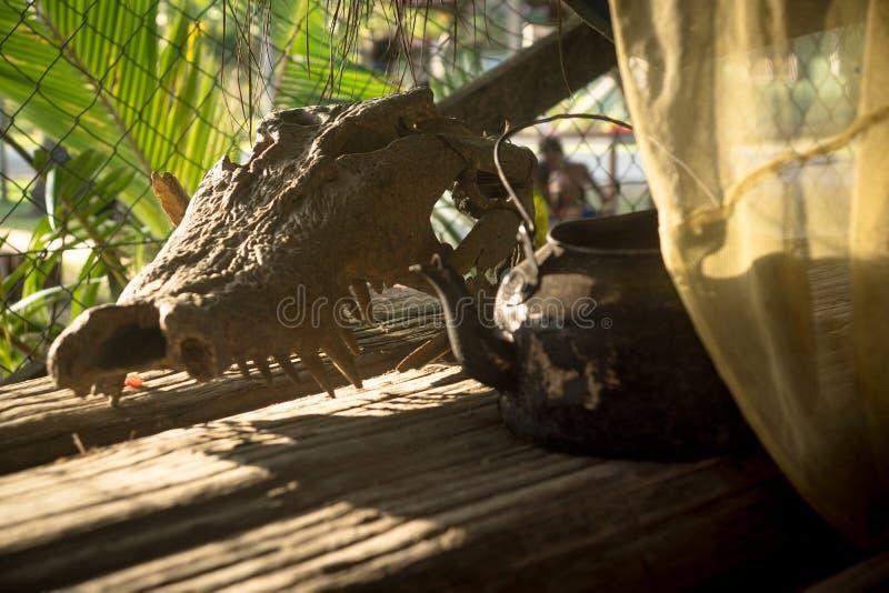 Inom det stam- huset i PNG royaltyfri fotografi