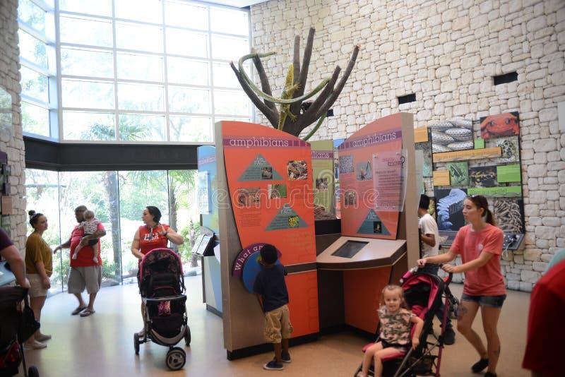 Inom Texarkanaen Texas Welcome Center royaltyfria foton