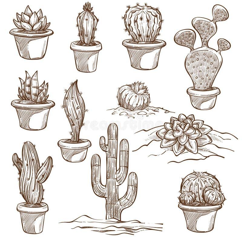 Inomhus kaktusväxter och utomhus- art skissar royaltyfri illustrationer