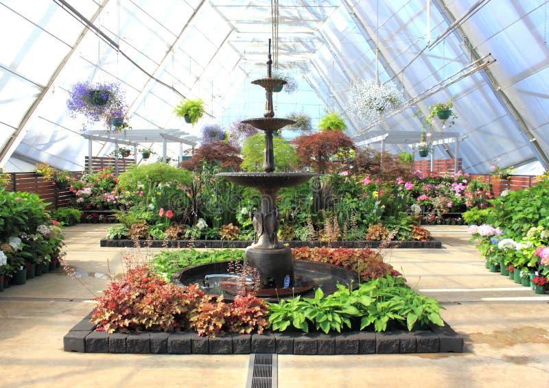 Inomhus trädgård och vattenspringbrunn arkivbild