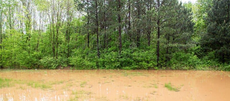 Inondation de bord de la route photo libre de droits
