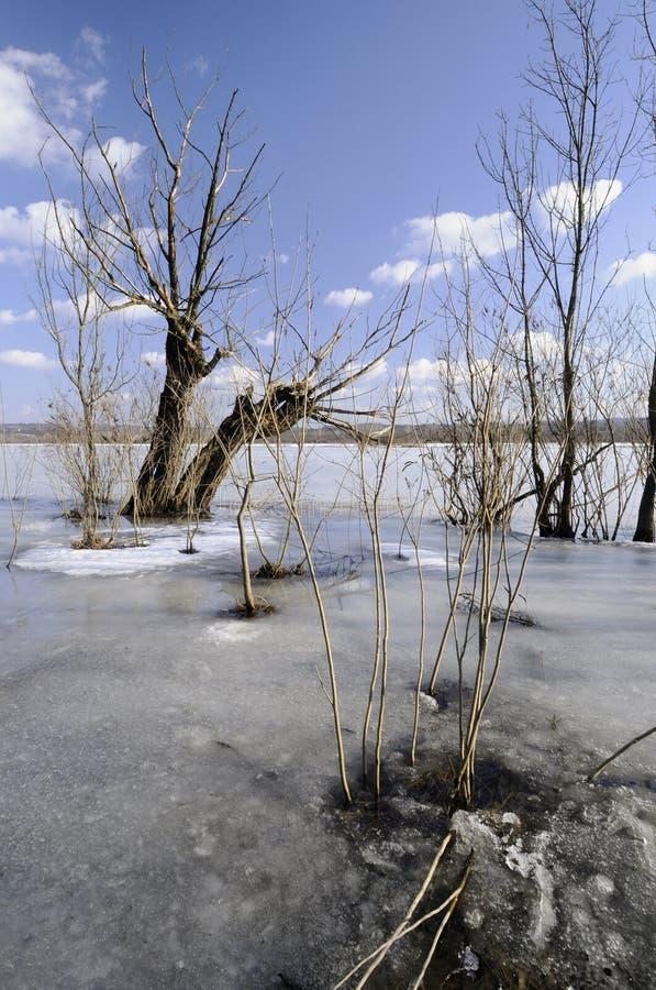 Inondation de l'hiver photographie stock
