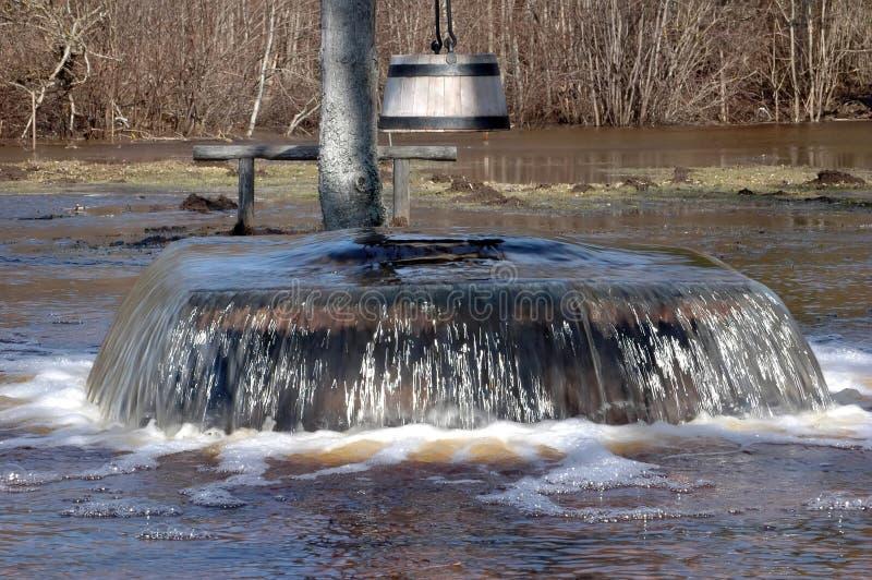 Inondation de source dans Tuhala, le puits de la sorcière bouillante photos libres de droits