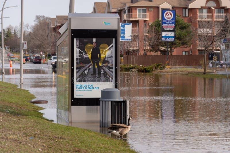 Inondation en printemps 2019 du Qu?bec photographie stock libre de droits