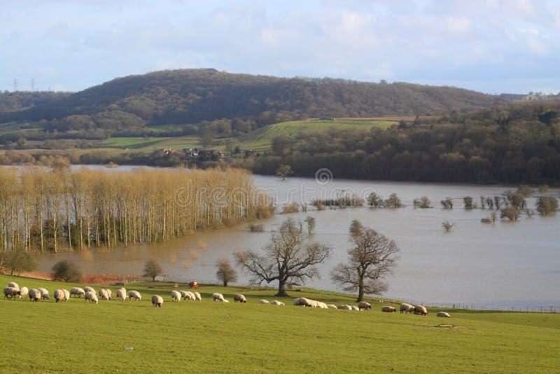 Inondazione B immagine stock