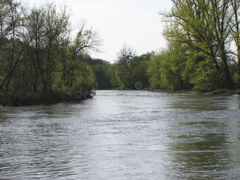 Inondazione della primavera Nascosto sotto l'isola dell'acqua fotografia stock libera da diritti