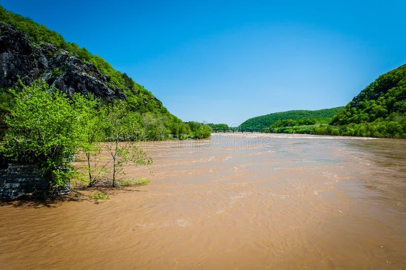 Inondazione della primavera sul fiume Potomac in traghetto di Harper, Vir ad ovest fotografia stock libera da diritti