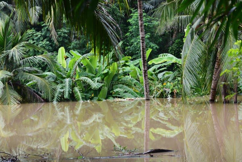 Inondazione devastante immagine stock libera da diritti
