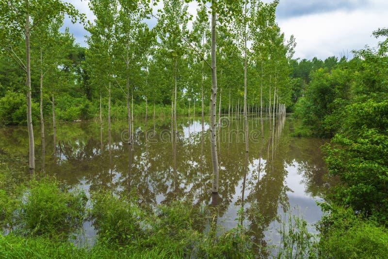 Inondazioni pesanti nella campagna fotografia stock libera da diritti