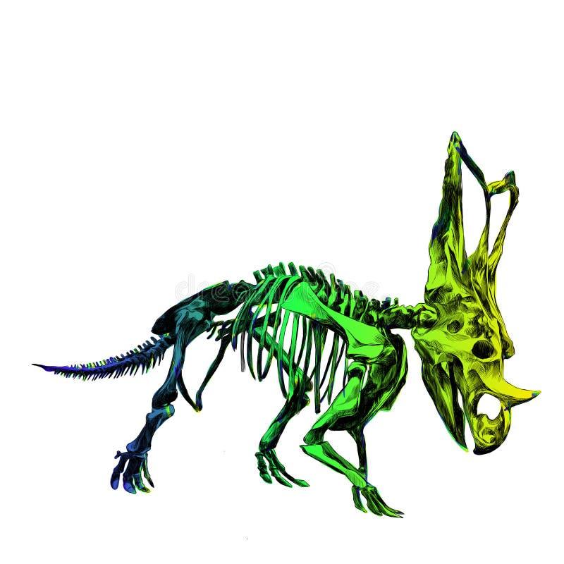 Inosaur de esqueleto Triceratop ilustração do vetor