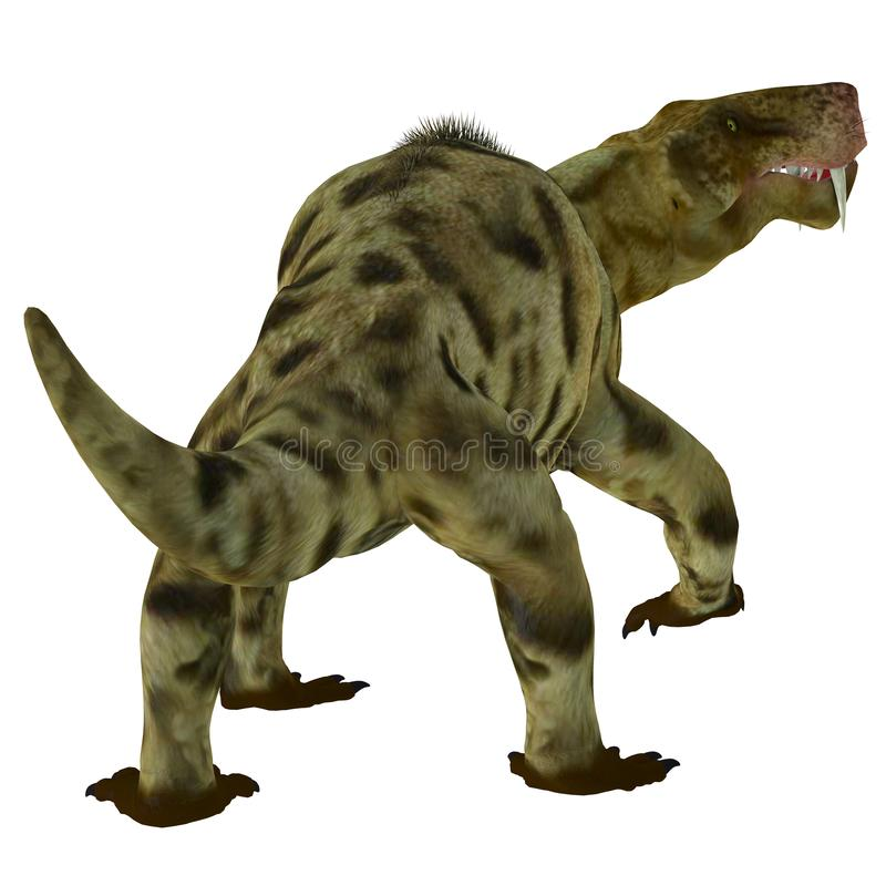 Inostrancevia Dinosaur Tail. Inostrancevia was a carnivorous cat-like dinosaur that lived in Russia during the Permian Period vector illustration