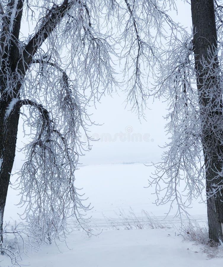 Inquadramento di inverno immagini stock
