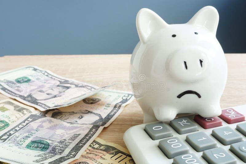Inquiétudes d'argent Porcin malheureux et peu de billets de banque avec la calculatrice Problèmes avec l'argent images stock